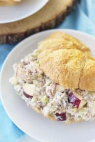 An Apple Tuna Salad Sandwich is a quick and simple lunch that requires no cooking! | www.countrysidecravings.com