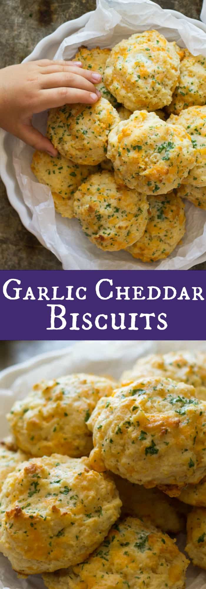 Garlic Cheddar Biscuits | Countryside Cravings