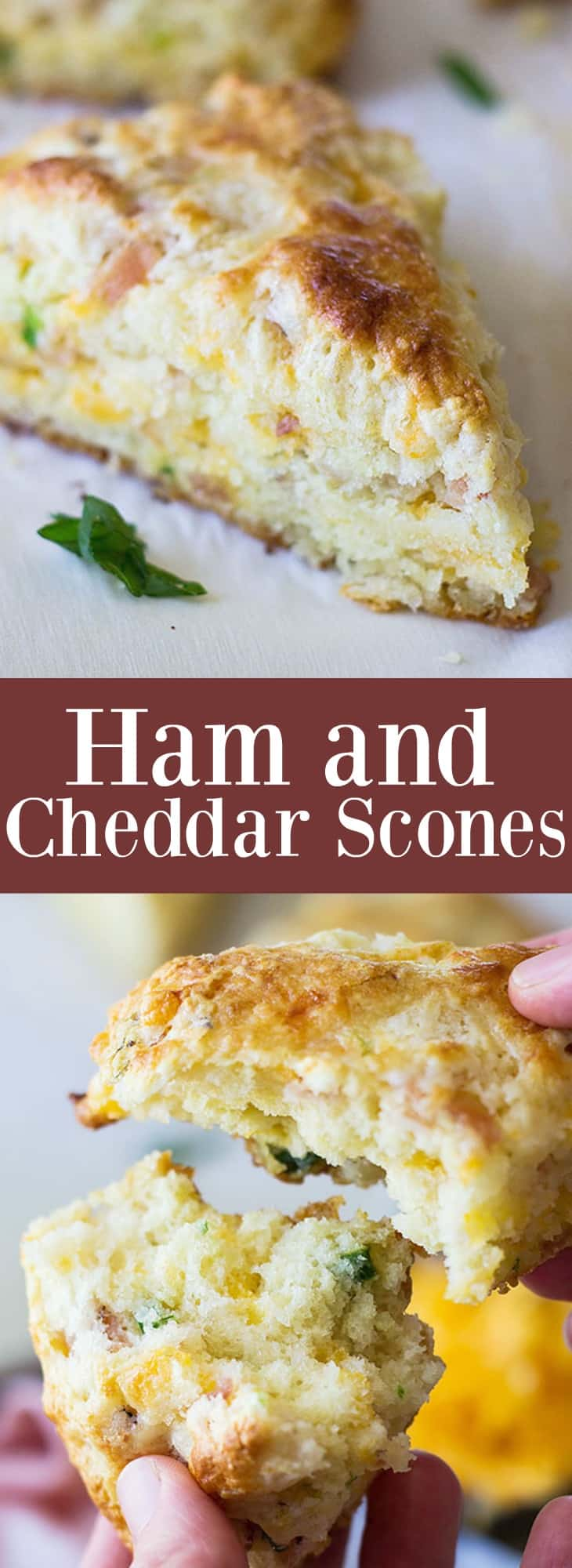 Savory Ham and Cheddar Scones that are easy to make and perfect for breakfast, snack time or with a steaming bowl of soup! | www.countrysidecravings.com